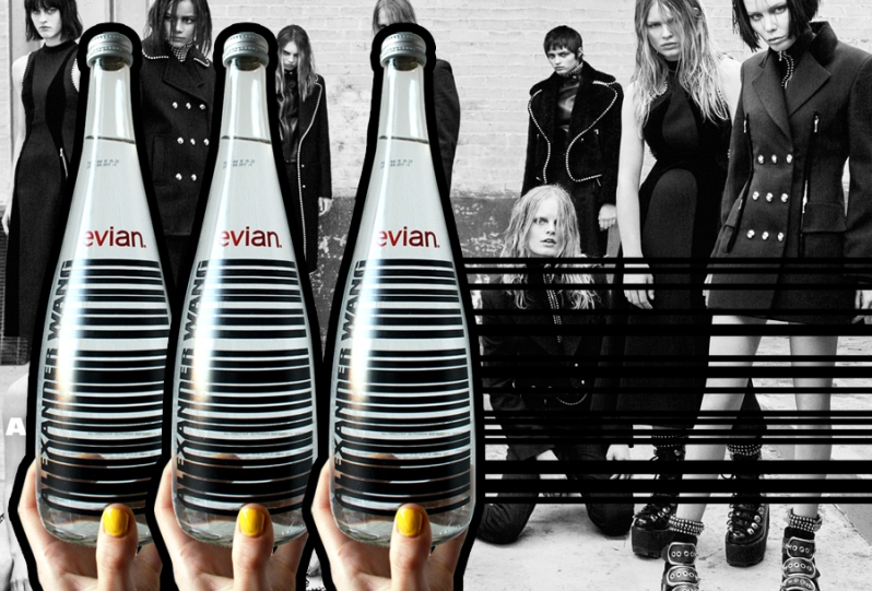 alexander-wang-evian copy